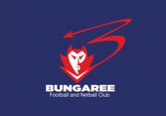Logo (wide)